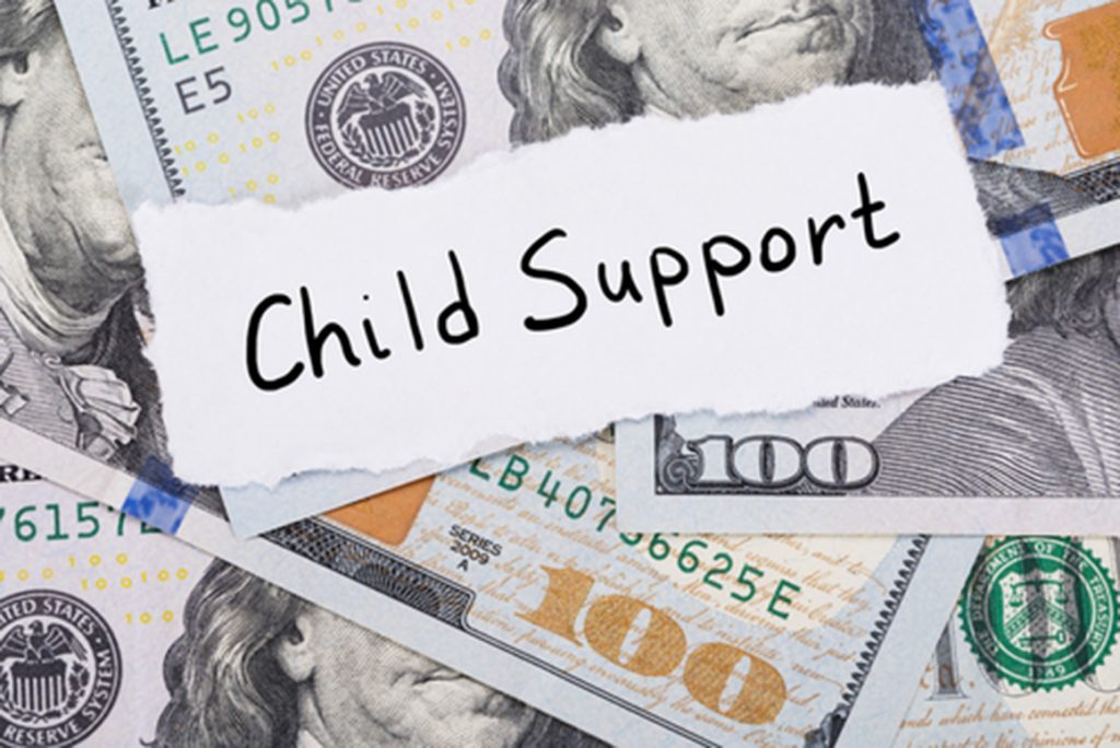 Child Support Voluntary Payment